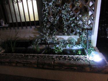 夜の金魚&メダカハウス?
